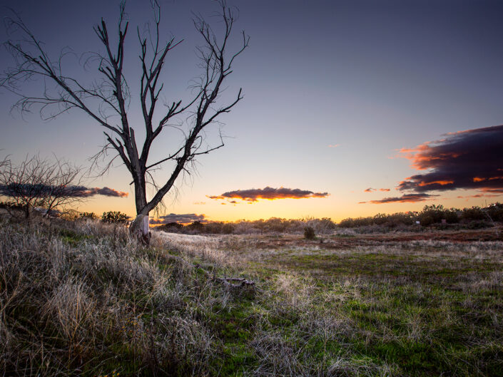 Sedona Landscapes